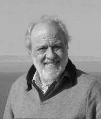 Julio Bernárdez